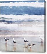 Seaspray Canvas Print