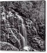 Secluded Falls - Bw Canvas Print