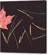 Secret Language Of The Forest Canvas Print