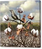 Secret Of The Mockingbird Canvas Print