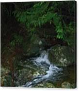 Secret Water Canvas Print