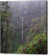 Secret Waterfall Canvas Print