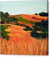 Sedgewick Reserve Canvas Print