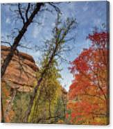 Sedona Fall Colors Canvas Print