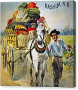 Seed Company Poster, C1880 Canvas Print