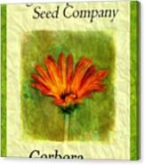 Seed Packet -- Gerbera Daisies Canvas Print