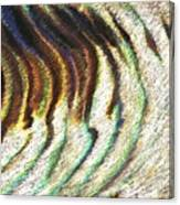 Seeking Harmony Canvas Print