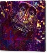 Selfie Monkey Self Portrait  Canvas Print