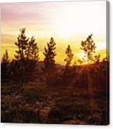 Selway Wilderness Canvas Print