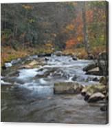 Seneca Creek Autumn Canvas Print
