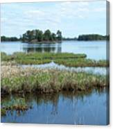 Seney Canvas Print
