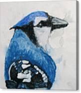 Sentimental Blue Canvas Print