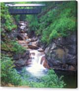 Sentinel Pine Bridge Flume Gorge Canvas Print