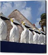 Sentry Pelicans Canvas Print