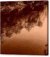 Sepia River Canvas Print