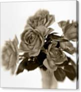 Sepia Roses Canvas Print