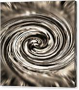 Sepia Whirlpool - Derived From Ribbon Grass Plant Image Canvas Print