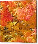 September Leaves Canvas Print