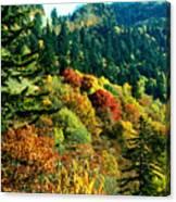 September Mountainside Canvas Print