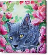 Serafina Canvas Print