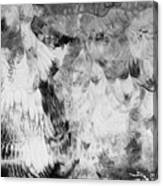 Seraphim Canvas Print