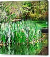 Serene Iris Canvas Print