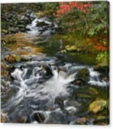 Serene Mountain Stream Canvas Print