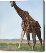 Serengeti Longneck Canvas Print