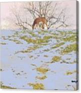 Serenity In The Spring Snow Canvas Print