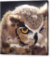 Serious Horned Owl Canvas Print