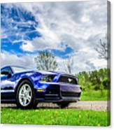 Serious Stang Canvas Print