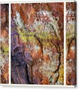 Set In Stone Triptych Canvas Print