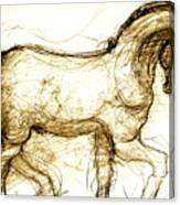 Set The Stallion Free Canvas Print