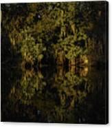 Setting Sun In Maurepas Swamp Canvas Print