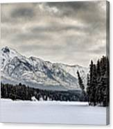 Settled Chill Canvas Print