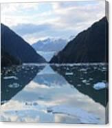 Sawyer Glacier  Canvas Print