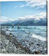 Seward Seashore Canvas Print
