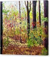 Sewp 7-05 Canvas Print