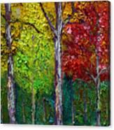 Sewp Fall Canvas Print