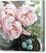 Shabby Chic Peonies With Bird Nest Robins Eggs - Summer Garden Peonies Canvas Print