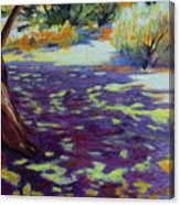 Shade At Smith Rock 2 Canvas Print