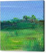 Shaded Meadow Canvas Print