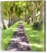 Shaded Walkway To Princeville Market Canvas Print