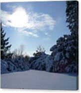 Shades Of Blue In Winter Canvas Print
