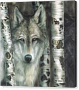 Shades Of Gray Canvas Print