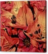 Shades Of Spring Canvas Print