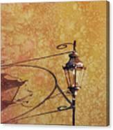 Shadow Of Light Canvas Print