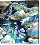 Shadow Play In Mission Creek Canvas Print