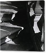 Shadow Steps Canvas Print