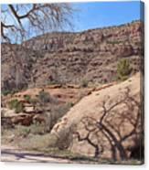 Shadow Tree Dominguez-escalante Canyon Colorado Canvas Print